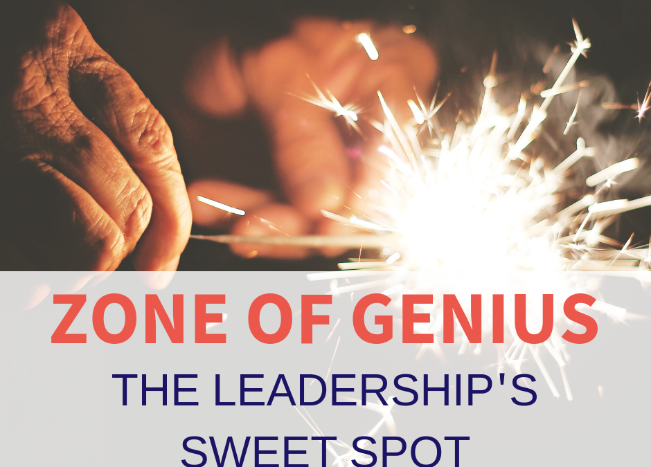 The Zone of Genius – the leadership's sweet spot