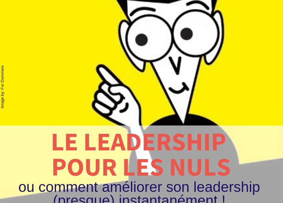 Le Leadership pour les nuls